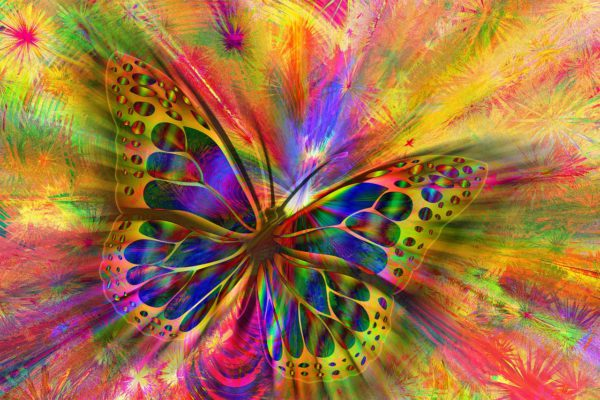 A colourful abstract butterfly