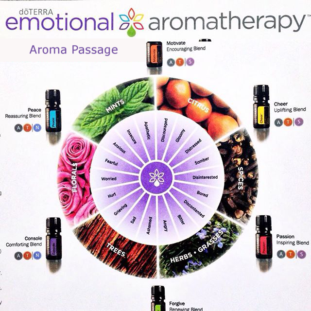 DoTerra essential oils Aromatherapy Kit with Emotion Blends is shown with a circle of emotions.